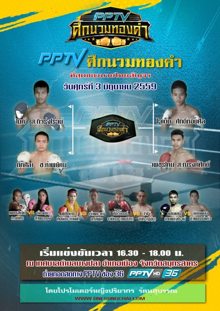 handbill pptv 3